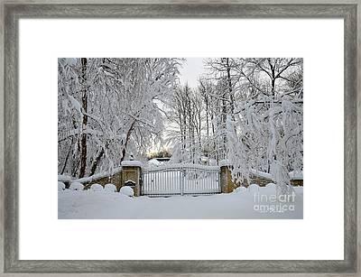 Winter Framed Print by Jan Daniels