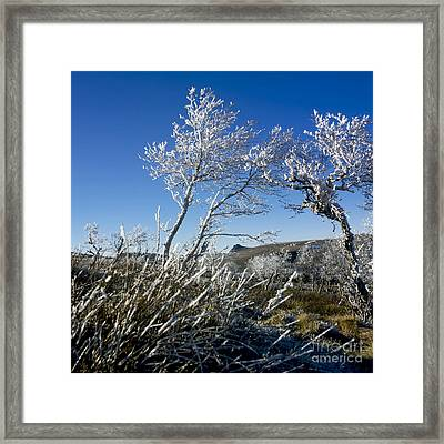 Winter Landscape.  Auvergne. France Framed Print by Bernard Jaubert
