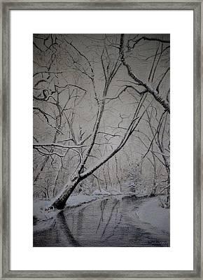 Winter Light Framed Print by Lynn Hughes