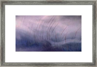 Winter Long Grass Framed Print by Jean Moore
