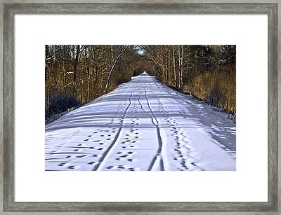 Winter Morning On Macomb Orchard Trail Framed Print