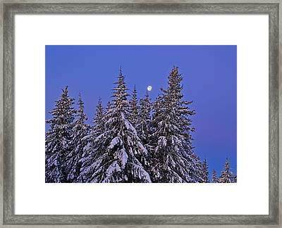 Framed Print featuring the photograph Winter Night by Michele Cornelius