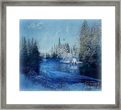 Winter Paradise Framed Print by Lianne Schneider