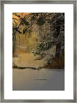 Framed Print featuring the photograph Winter Path by Mary Timman