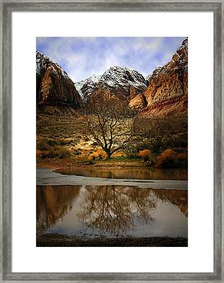 Winter Reflections Framed Print by Nabila Khanam