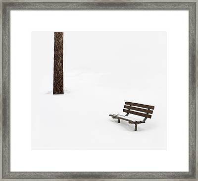 Winter Scene Framed Print by Steve Gadomski