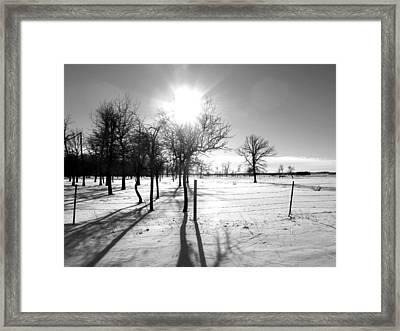 Winter Shadows Framed Print by Leanna Lomanski