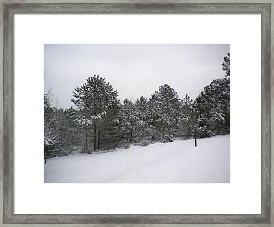 Winter Slope Framed Print by Tessa Priddy
