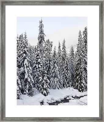 Winter Snow Scene Framed Print by Sylvia Hart