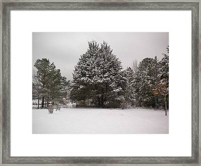 Winter Snow Framed Print by Tessa Priddy