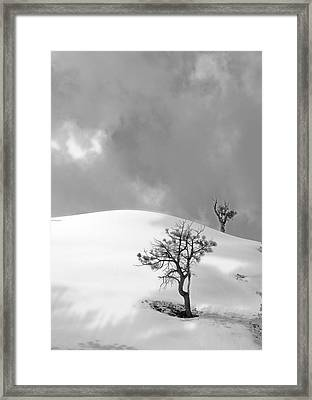 Winter Solitude Framed Print by Viktor Savchenko