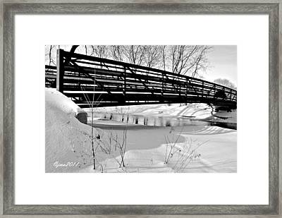 Winter Splendor In B And W Framed Print by Janice Adomeit