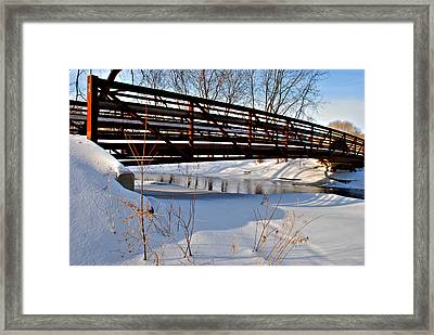Winter Splendor Framed Print by Janice Adomeit