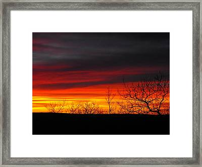 Winter Sunset Framed Print by Rebecca Cearley