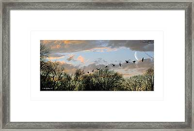 Winter Sunset  Silhouette Framed Print by Brian Wallace