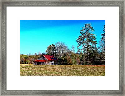 Winter Tobacco Field Framed Print