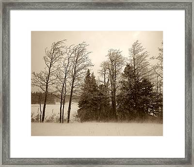 Framed Print featuring the photograph Winter Treeline by Hugh Smith