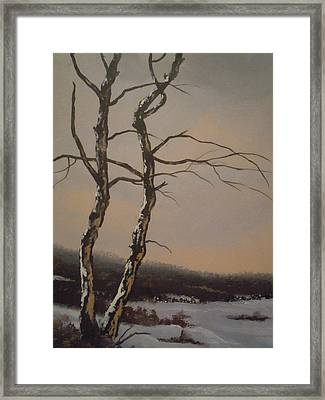 Winter Trees Framed Print by James Guentner