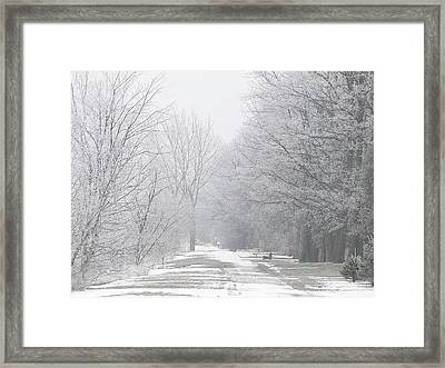 Winter Walkway Framed Print