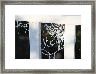 Framed Print featuring the photograph Winter Web Number Two by Paula Tohline Calhoun
