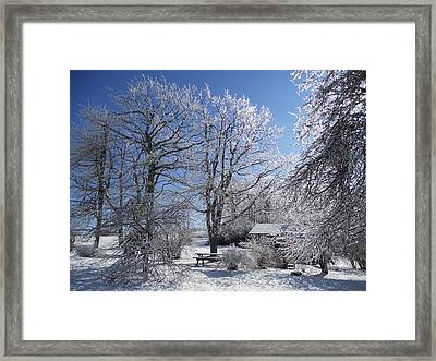 Framed Print featuring the photograph Winter Wonderland  by Diannah Lynch