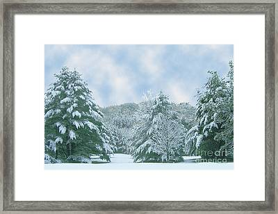 Framed Print featuring the photograph Winter Wonderland In The South by Michael Waters