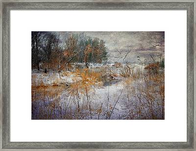 Framed Print featuring the photograph Winter Wonderland by Mary Timman