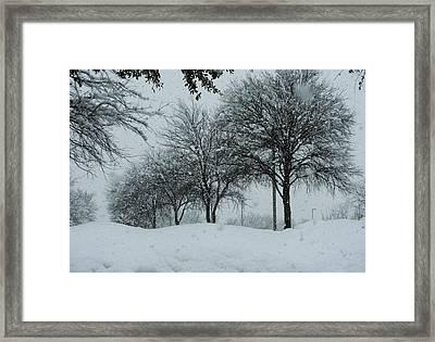 Winterlude Framed Print by Shawn Hughes