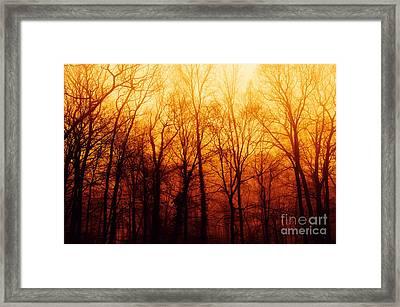 Winters Harvest Framed Print