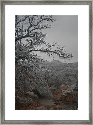 Winter's Kiss Framed Print by Jessica Jandayan
