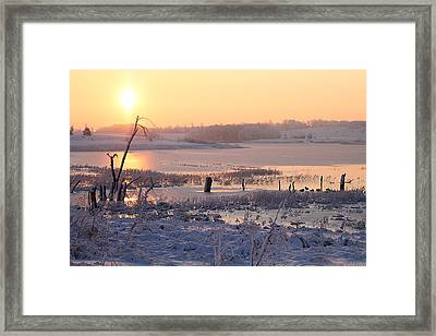 Framed Print featuring the photograph Winter's Morning by Elizabeth Winter