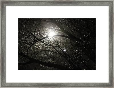Winter's Night  Framed Print by Hope Williamson
