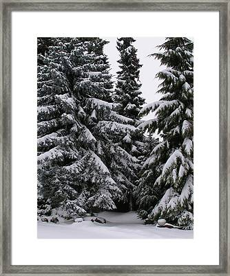 Winters Silence Framed Print by Rand Swift