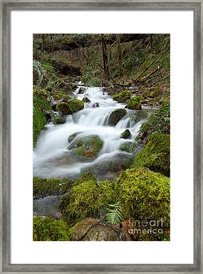 Wintertime Creek Framed Print by Beve Brown-Clark Photography