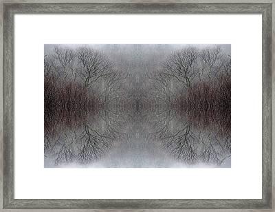 Wintertime Dreamtime Framed Print by Ed Kelley