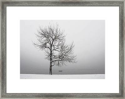 Wintertrees Framed Print