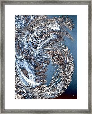 Wintry Pine Needles Framed Print