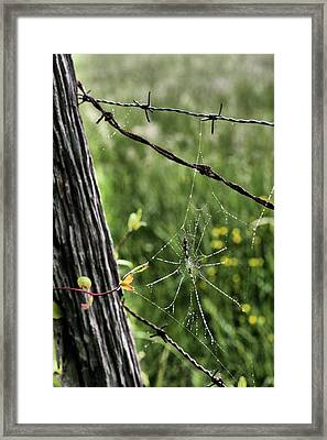 Wired Framed Print by JC Findley