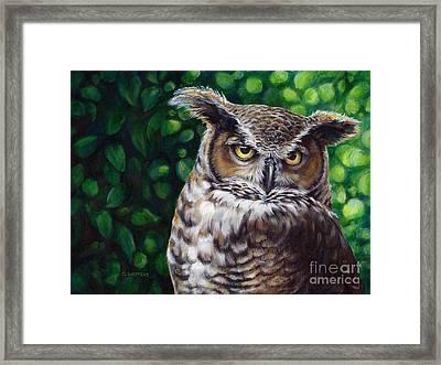 Wisdom Great Horned Owl Framed Print