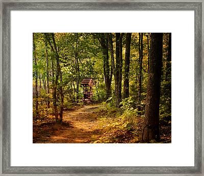 Wishing Path Framed Print by Jai Johnson
