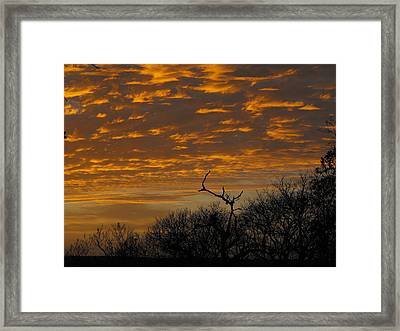 Wispy Sunset Clouds Framed Print by Rebecca Cearley