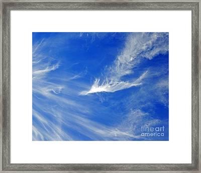 Wispy White Framed Print