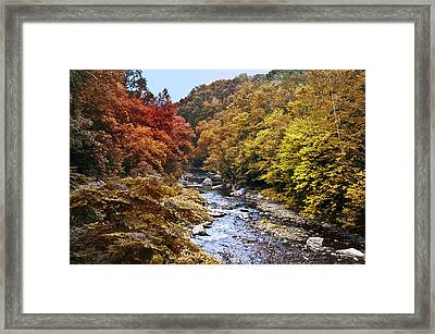 Wissahickon Creek In Fall Framed Print by Bill Cannon