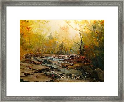 Wistful Waters Framed Print by Sarah Jane Conklin