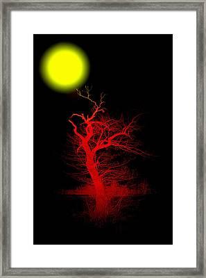 Witchwood Framed Print by Steve K