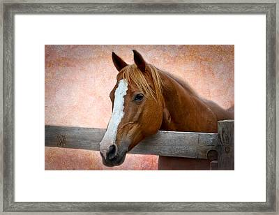 With A Whisper Framed Print by Doug Long