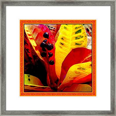 With All My Love Framed Print by Mario Paiva