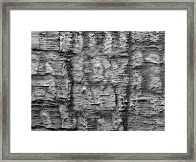 Witness To Time Framed Print