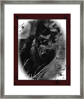 Wolf Black And White Designer Framed Print by Debra     Vatalaro