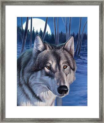 Wolf In Moonlight Framed Print